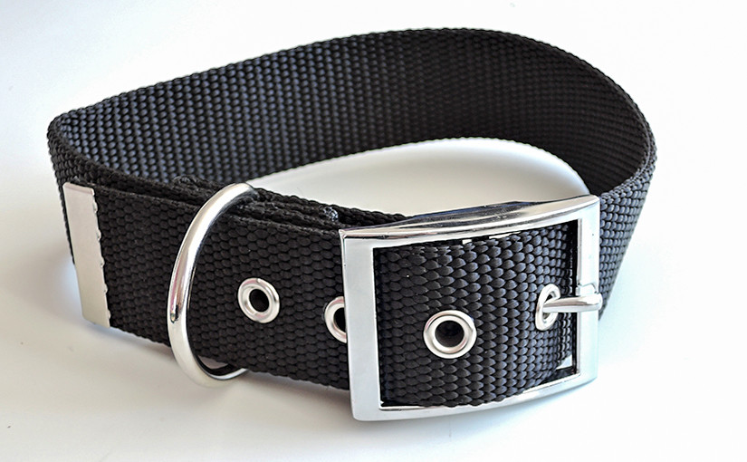 A guide for making dog collars from polypropylene webbing